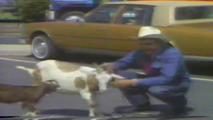 Car Dealerships Anchorage >> Cal Worthington Dead -- Famed Car Dealer Dies at 92