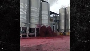 Damaged Container Spills 50,000 Liters of Red Wine in Spain