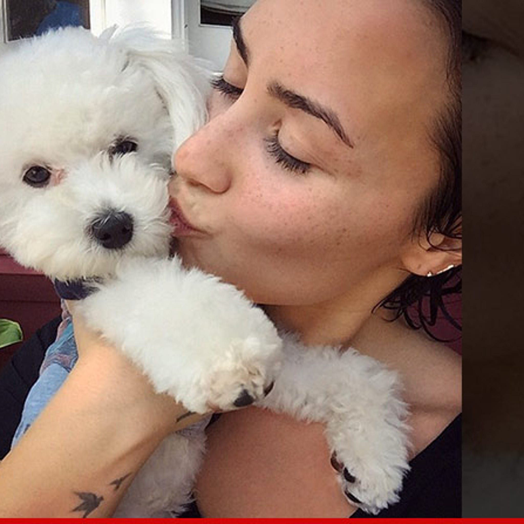 View Buddy Lovato  Background