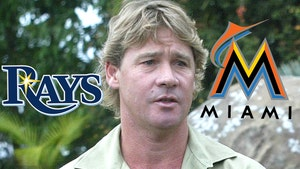 Miami Marlins Use Steve Irwin In Savage Attack On Tampa Bay Rays
