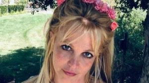 Britney Spears Conservatorship Testimony Inspires Californians in Same Boat