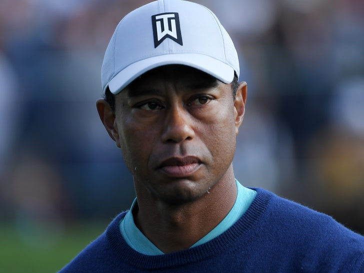 Tiger Woods Won't Face Criminal Charges for Crash, Sheriff Says.jpg