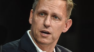 Peter Thiel Sued Over Landslide That Damaged Neighbor's Home