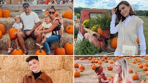 Stars At The Pumpkin Patch -- Gourd Looking!