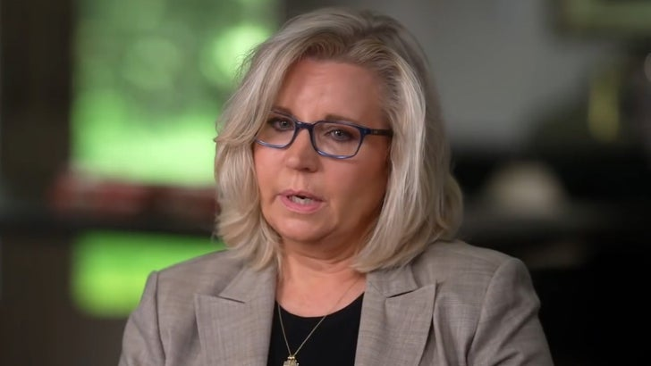 Liz Cheney Says She was Wrong to Oppose Gay Marriage, Blasts Trump on '60 Minutes'.jpg