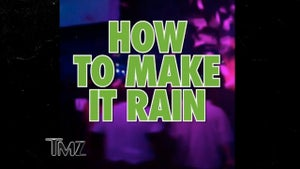Lil Wayne -- The Make It Rain How-To Guide