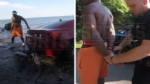 Jermiah Braswell Wild Arrest Video Shows Cops Pulling NFL WR Out of Lake