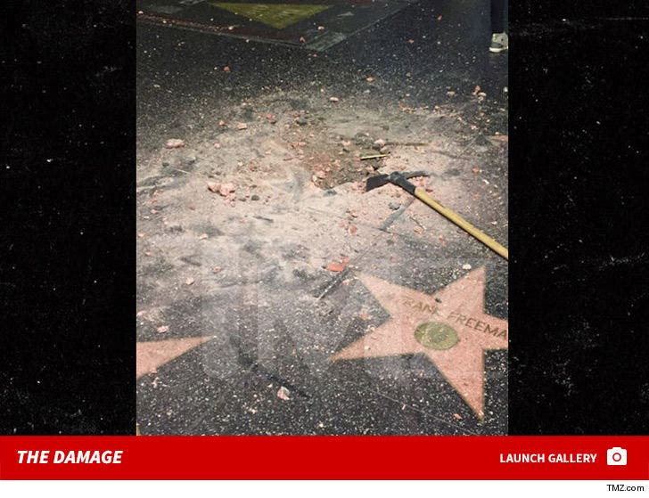 Donald Trump's Damaged Star