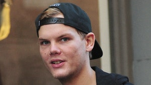 Avicii's Team Announces It's Releasing New Album 'TIM'