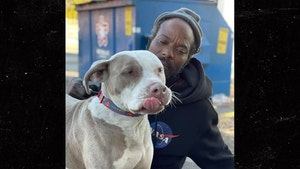 Atlanta Homeless Man Rescues 16 Dogs and Cats From Burning Shelter