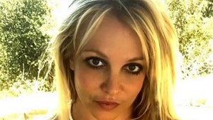 Britney Spears Co-Conservator Bessemer Trust Files to Resign, Jamie Remains
