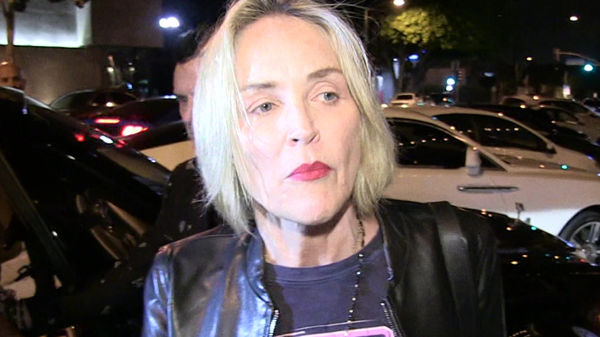 Sharon Stone Asks for Prayers for 11-Month-Old Nephew with Organ Failure thumbnail