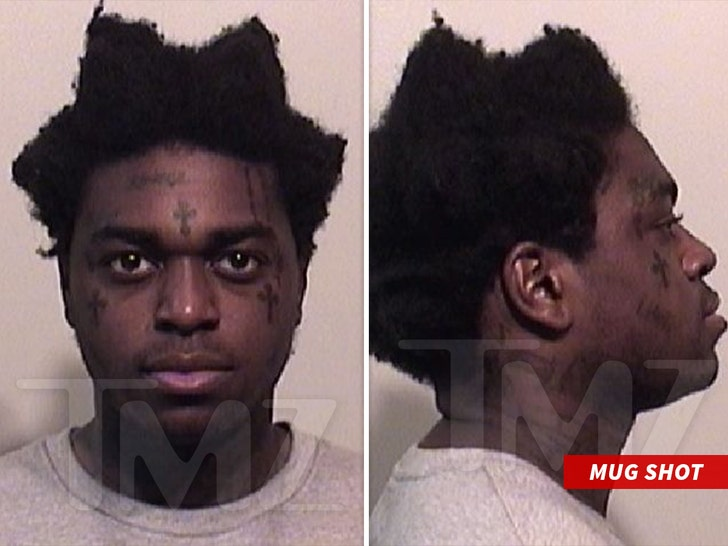 Kodak Black Released After Weapons and Drugs Arrest, Holding A Ton