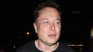 Elon Musk Denies Autopilot to Blame for Fatal Tesla Crash in Texas