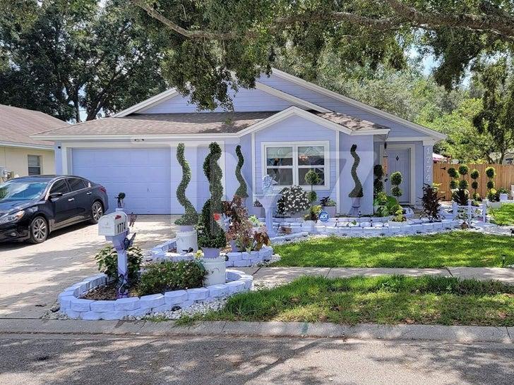 Edward Scissorhands House Remodel
