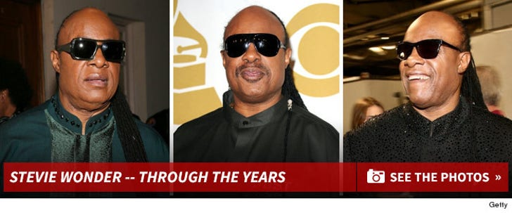 Stevie Wonder -- Through the Years
