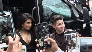 Jonas Brothers Greeted by Screaming Fans at 'Chasing Happiness' Premiere