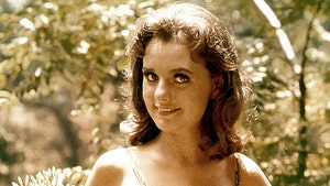 'Gilligan's Island' Fans Raise Over $120k to Get Dawn Wells into Assisted Living