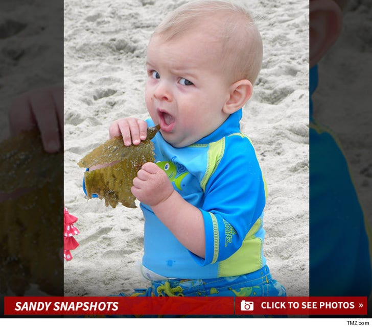 TMZ's Beachin' Baby Photo Contest -- Shore Thing!