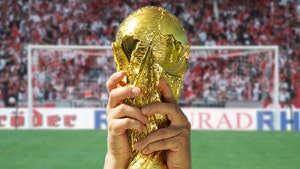 Saudi Arabia Wants World Cup Tourney Every 2 Years Instead of 4, FIFA to Decide
