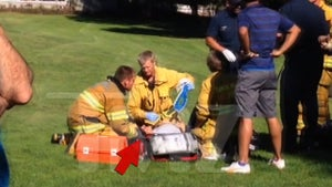 Harrison Ford -- Plane Crashes ... Actor Seriously Injured (VIDEO UPDATE: Paramedics Treat Harrison)