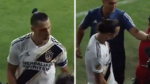 Zlatan Ibrahimovic Fires Crotch Grab At LAFC Fan After Postgame Taunts