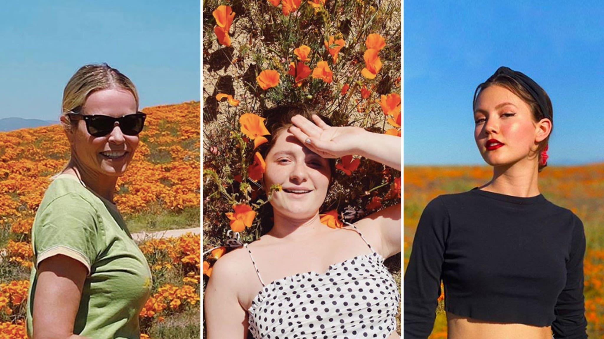 Hollywood #SuperBloom -- Stars Avoid This Year's Poppy Hot Shots