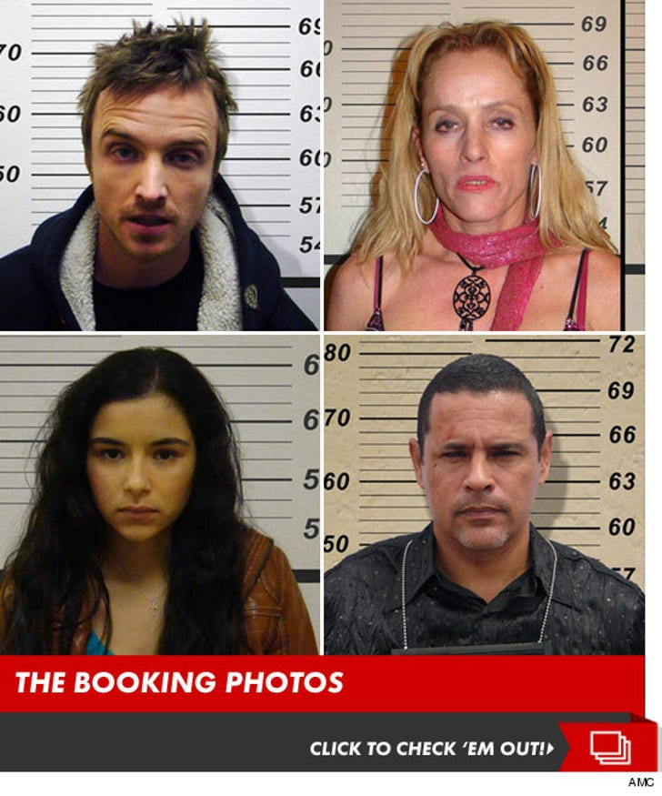 """""""Breaking Bad"""" -- The Booking Photos"""