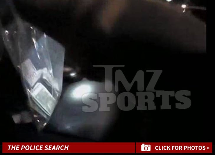 Donovan McNabb's Police Search Photos
