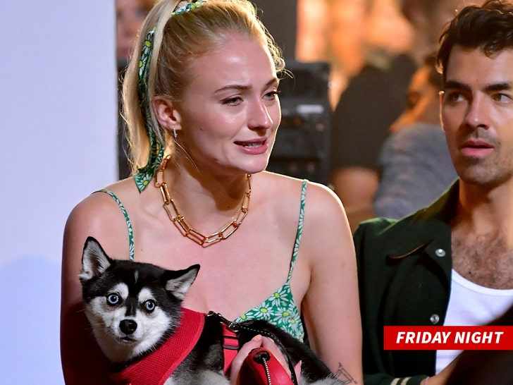 Sophie Turner Emotional After Loss of Her Dog