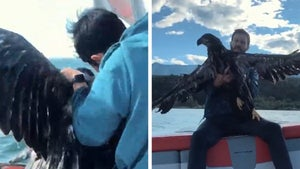 Man Rescues Drowning Baby Bald Eagle in Wild Video