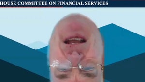 Congressman Tom Emmer Appears Upside-Down on Zoom During Hearing
