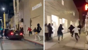 Teens Rob Fendi Store in Beverly Hills, Video Captures Escape Attempt