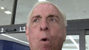 Ric Flair Says He Did Not Give Oral Sex To Woman On Train
