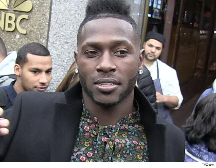 Antonio Brown Seeking Full Custody Of Daughter After Baby