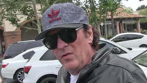Michael Madsen Charged with DUI in Malibu Arrest
