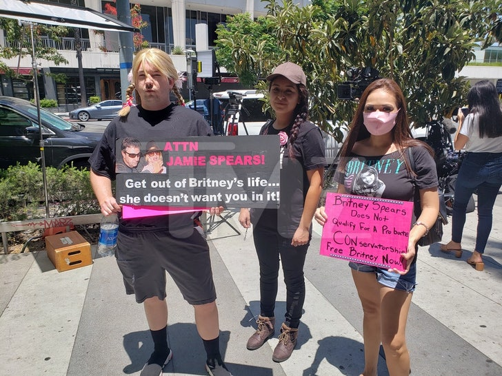 Free Britney Supporters Outside The Los Angeles Courthouse