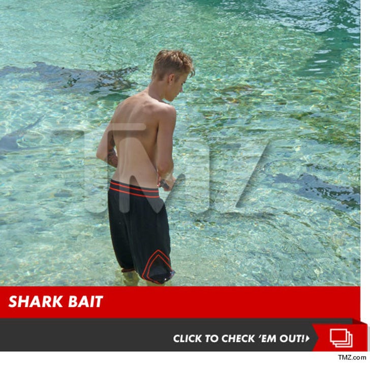Justin Bieber -- Swimming With Sharks