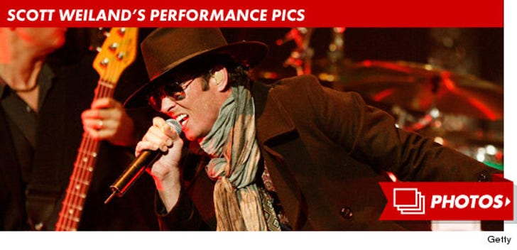 Scott Weiland's Performance Pictures