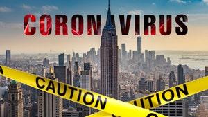 New York On 24-Hour Coronavirus Shutdown, State 'On Pause'