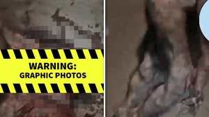 Real-Life 'Werewolf in Nigeria' Video is a Hoax, Dummy Used for Flick