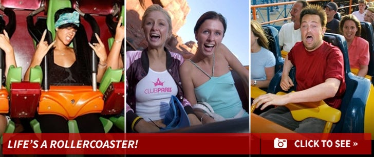 Life's A Rollercoaster!