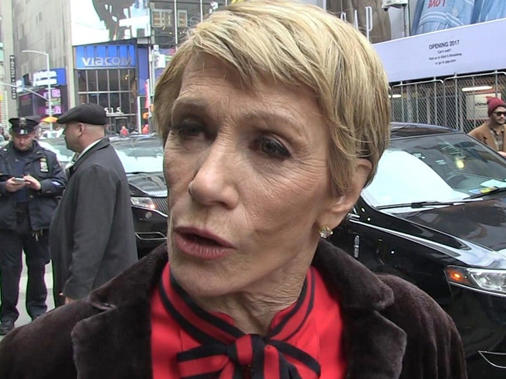 'Shark Tank' star Barbara Corcoran loses nearly $400,000 in email scam