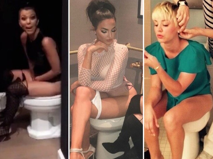 Celebrity Toilet Selfies