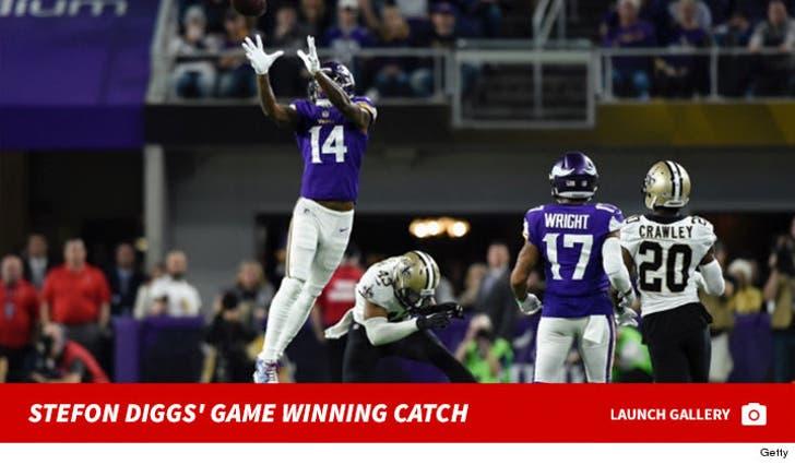 Stefon Diggs' Game Winning Catch