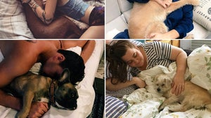 Stars Cuddling Canines ... Ruff Life!