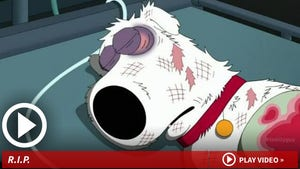 Brian from 'Family Guy' -- All Cartoon Dogs Don't Go To Heaven