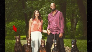 Hope Solo's Dog Dies After Being Shot, 'We're Brokenhearted'