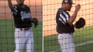 Minor League Pitcher Catches Bird on Field, Puts On Top Of Head!!