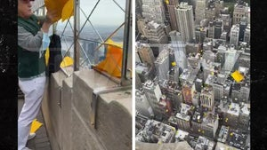 Trump Star Vandal James Otis Drops Anti-Trump Flyers from Empire State Building